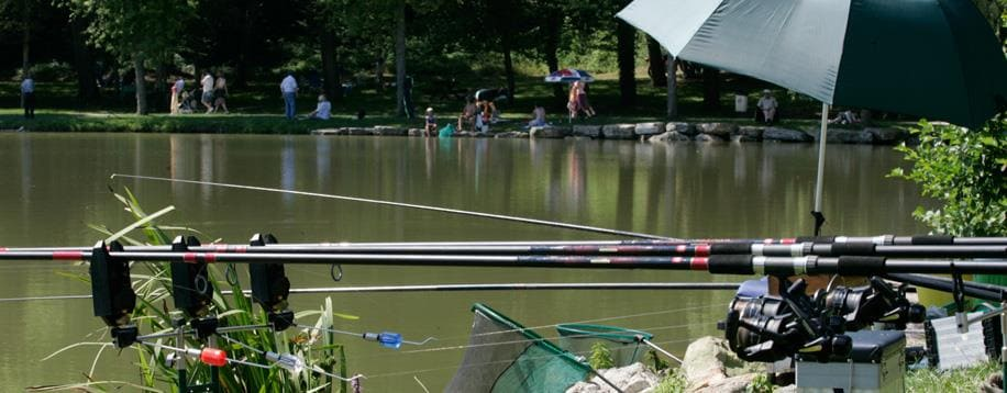 Fishing at the lake of Folie: Camping Vosges, camping Porte des Vosges